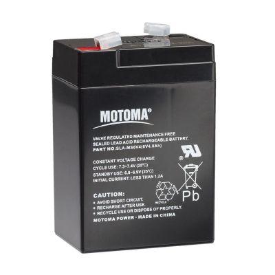 Gallagher batterij 6 Volt 4 Ah voor S10, S16 en S20