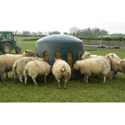 Hooistolp voor schapen
