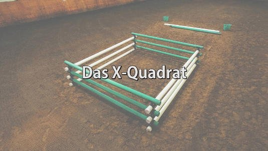 X vierkant